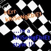 ...in a kRiSeNgEbiEt style !!! by hErr kRiSeNgEbiEt