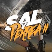 Sal Y Perrea 2 (Remix) de Tomi Dj