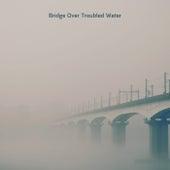 Bridge Over Troubled Water by Leonardo Reyes