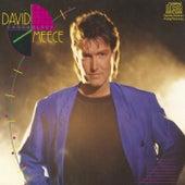 David Meece/chronology by David Meece
