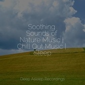 Soothing Sounds of Nature Music | Chill Out Music | Sleep von Instrumental