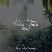 Calm & Caring Melodies   Stress Relief by Yoga Music