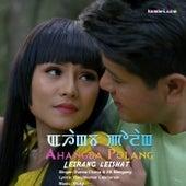 Leirang Leishat by Surma Chanu