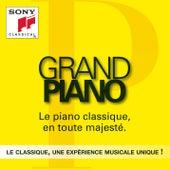 Grand Piano de Various Artists