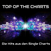 Top of the Charts - Die Hits aus den Single Charts by Various Artists