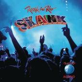 Rock in Rio 2011 - Skank de Skank