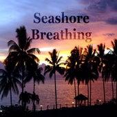 Seashore Breathing (Beach Housemusic Compilation) de Various Artists