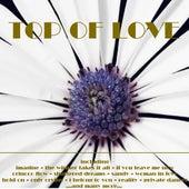 Top of Love von Various Artists