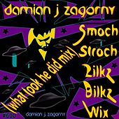 Smoch Stroch Zilkz Bilkz Wix (What Took He Did Mix) von Damian J Zagorny