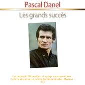 Les grands succès de Pascal Danel