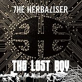 The Lost Boy von Herbaliser