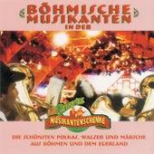 Böhmische Musikanten in der Wernesgrüner Musikantenschenke by Various Artists