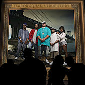 True Story by Terror Squad
