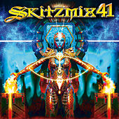 Skitzmix 41 von Various Artists