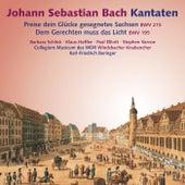Bach: Cantatas BWV 215, 195 by Barbara Schlick