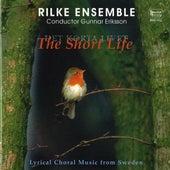 Det korta livet / The Short Life – Lyrical Choral Music from Sweden by Rilke Ensemble