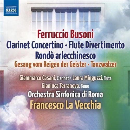 Busoni: Lustspielouverture - Rondo arlecchinesco - Clarinet Concertino - Divertimento - Tanzwalzer by Various Artists