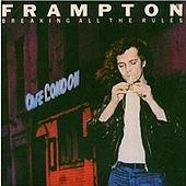 Breaking All The Rules von Peter Frampton