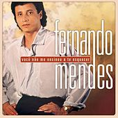 Você Não Me Ensinou A Te Esquecer - Pérolas E Sucessos de Fernando Mendes