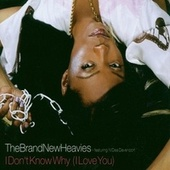 I Don't Know Why (I Love You) von Brand New Heavies