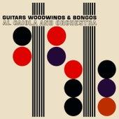 Guitars, Woodwinds & Bongos by Al Caiola