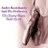 The Sleeping Beauty - Ballet, Op. 66 de Andre Kostelanetz And His Orchestra