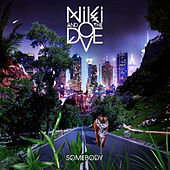 Somebody by Niki and the Dove