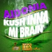 Kush Inna Mi Brain - Single by Aidonia