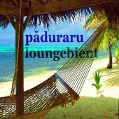Loungebient (Deephouse Mix) de Paduraru