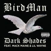 Dark Shades von Birdman