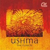 Ushma the Fusion de DJ John