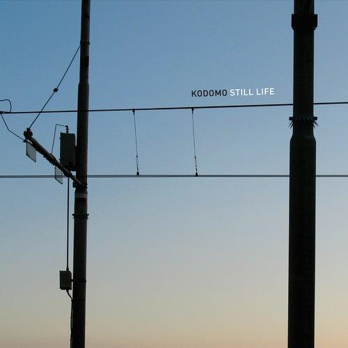 Still Life by Kodomo