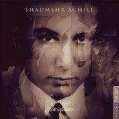 Tarafdar by Shadmehr Aghili
