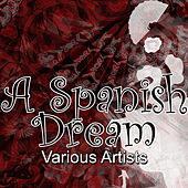 A Spanish Dream by Various Artists