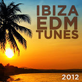 Ibiza EDM Tunes 2012 von Various Artists