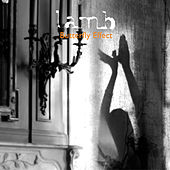Butterfly Effect - EP by Lamb