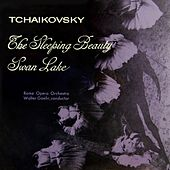 Swan Lake / The Sleeping Beauty by Walter Goehr