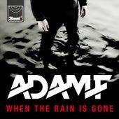 When the Rain Is Gone by Adam F