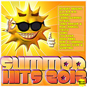 Summer Hits 2012 by Various Artists