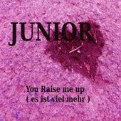 You raise me up ( es ist viel mehr ) by Junior