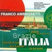 Ambrosetti, Flavio: Grazie Italia von Various Artists