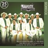 Íconos 25 Éxitos by Banda Movil
