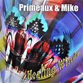 Healing Winds by Primeaux & Mike