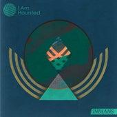I Am Haunted de Indians
