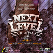 Next Level Riddim von Various Artists