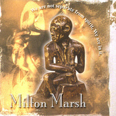 We Are Not Seperate From Spirit, We Are In It by Milton Marsh