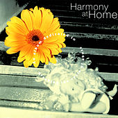 Harmony At Home by Various Artists