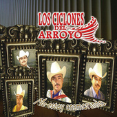 Me Estoy Enamorando by Los Ciclones Del Arroyo