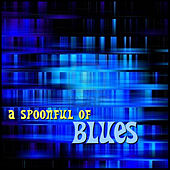 A Spoonful of Blues by Various Artists
