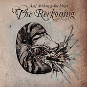 The Reckoning de Asaf Avidan